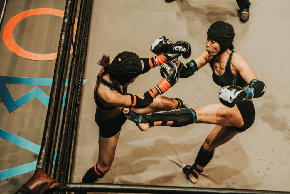 Best mma gloves used by thai fighters with venum brand