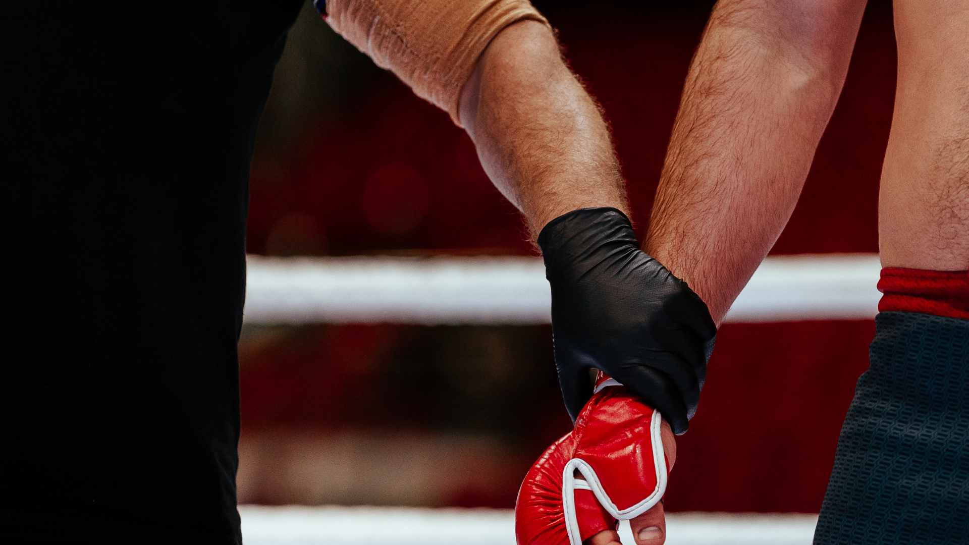 Why Do MMA Referees Wear Gloves
